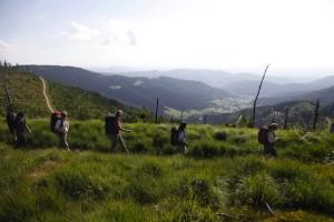 """""""Im Tal der Hämmer"""" ist einer der neuen Erlebnispfade in Baiersbronn. Er führt an Bergabhängen vorbei, von denen aus man eine atemberaubende Sicht über das Friedrichstal hat. Foto: Baiersbronn"""
