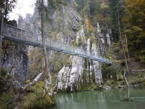 Auf dieser schwankenden Hängebrücke bewies die Thule Sapling Kindertrage ihr Klasse! Foto (c) kinderoutdoor.de