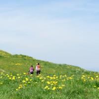 Wandern mit der Kindertrage am Hündle. Der Panoramaweg ist familiengerecht angelegt und bietet tolle Ausblicke.   Foto (c) kinderoutdoor.de