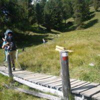 Abenteuerlich ist der Weg mit der Kindertrage zur Lüsner Alm.  foto (c) kinderoutdoor.de