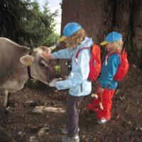Kindertragen Wanderungen in Serfauss-Fiss-Ladis. foto (c) kinderoutdoor.de